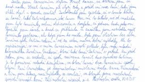 Adélky motivační dopis